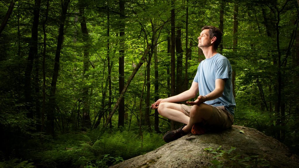 Should you Meditate in nature