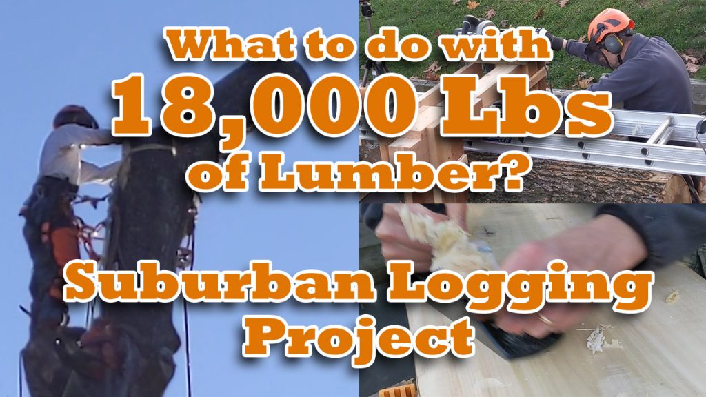 Suburban Logging Tree Project