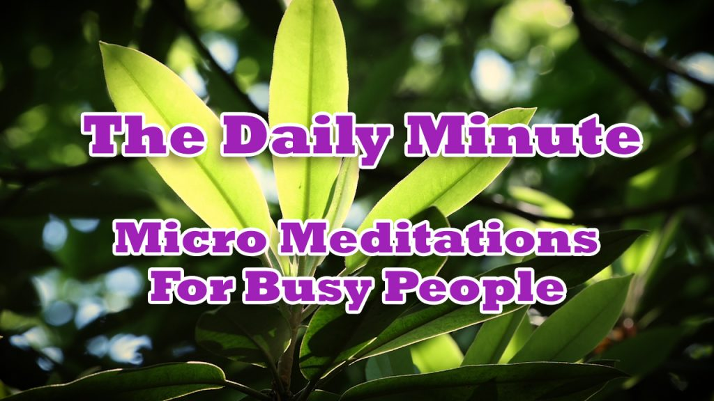 The Daily Minute - Mindfulness Meditation Video Series