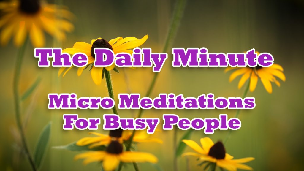 The Daily Minute - Mindfulness meditations for busy people - click here to view my daily YouTube mindfulness meditation series